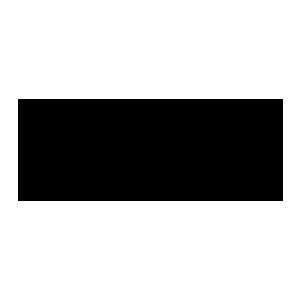logo-blink
