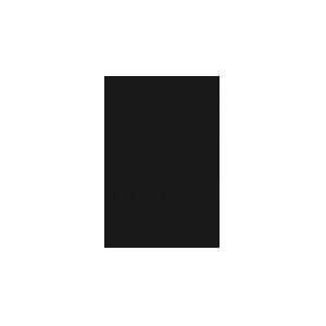 logo-mondriaan